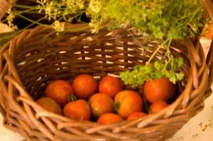 August 9 Harvest