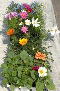 Kristins Flowers